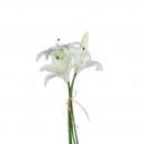 hurtownia Pozostałe: Lilii Morgana x4 3 kwiatów, 1 pączek, 36 cm, bia
